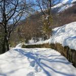 La prima neve della stagione al Rifugio Altino19