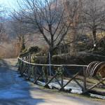 Santo Stefano al Rifugio Altino10