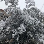 25 Aprile al RIfugio Altino di Montemonaco sui Monti Sibillini33